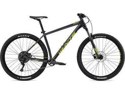 WHYTE 529 2019